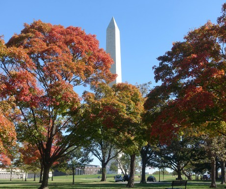 6 tips for a perfect weekend in washington dc