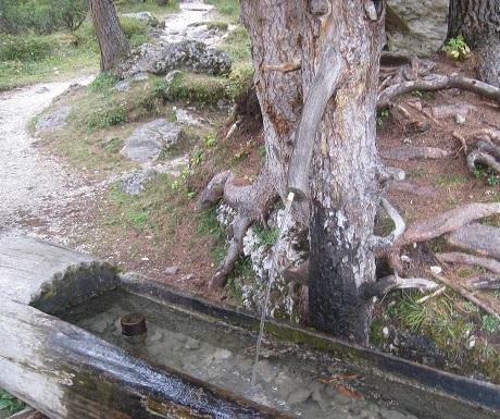 Scenic walk: Pisciadu waterfall, clear mountain water