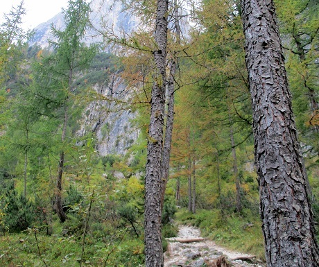 Scenic walks: Pisciadu