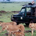 Lions-by-Kicheche-vehicle-in-Masai-Mara-conservancy