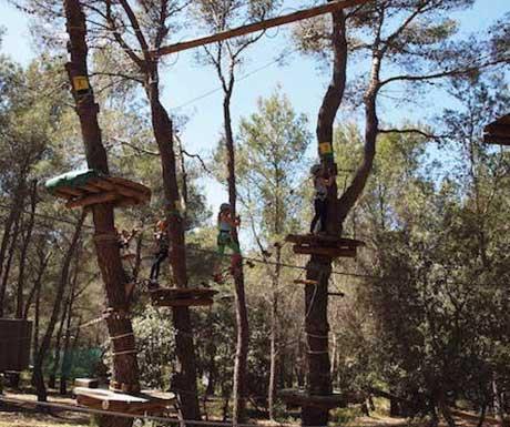 tree-tops-high-ropes-provence