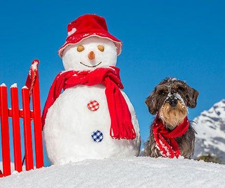 Snowman sunny day Alps