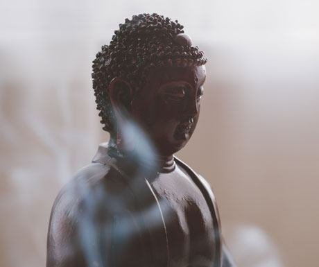 Meditate Japan