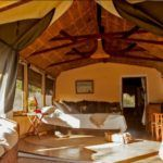 Kenya's top 5 family safari lodges
