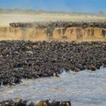 Africa's top 10 experiences