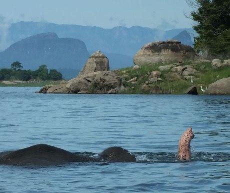 gal-oya-national-park-experience-travel-group-sri-lanka-resized