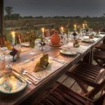 5 reasons safari works for solo travellers