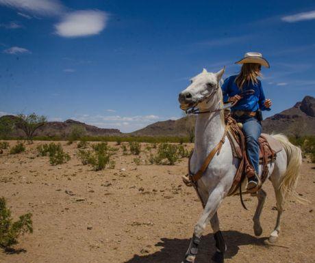 Riding at White stallion