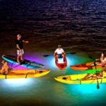 7 unsuspected gems in Key West