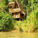 Top 5 hidden gems of the Amazon rainforest
