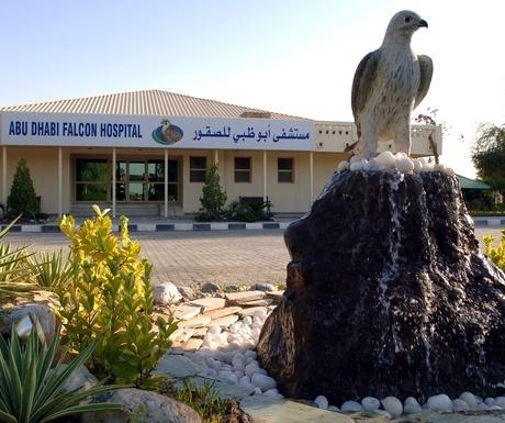 Falcon hospital ALTB