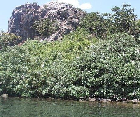 Mbasa Island