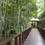Sustainable Travel, Choose Eco-Friendly Accommodation