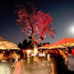 Top 5 most luxurious bars in Johannesburg