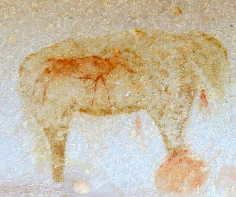 Kagga Kamma, rock art, elephant