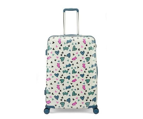 Love Me Love My Dog suitcase from Radley