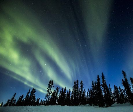 Northern Lights - Yukon