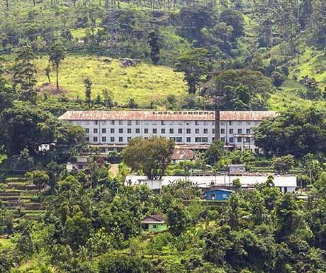 Where loolecondera estate