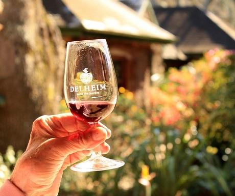 7 Restaurants, Cape Winelands, Delheim, wine