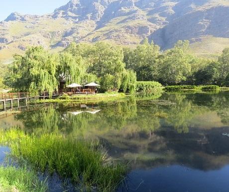 7-Restaurants-Cape-Winelands-Postcard-Cafe-lake