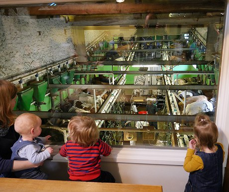 Low Sizergh Barn Farm - cafe view