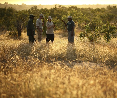 Selous Game Reserve