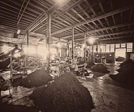 Loolecondera Tea Factory