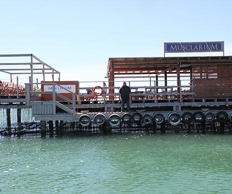 Musclarium Delta de l'Ebre boat trips
