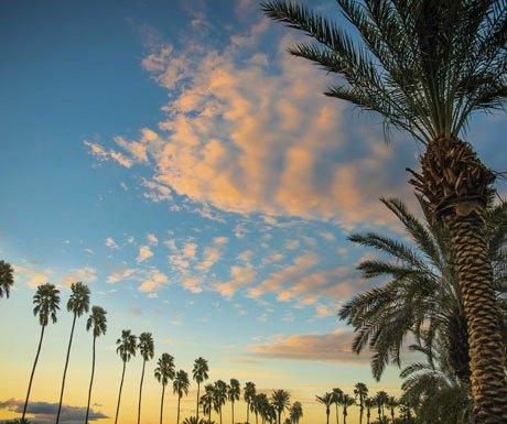 sunset palms, california