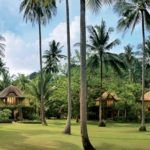 The world's best jungle resorts