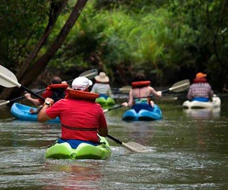 Damas-Island-Kayaking