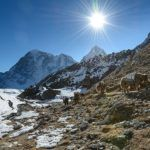 Mount Everest Base Camp to get a luxury hotel, helipad, restaurants and a museum