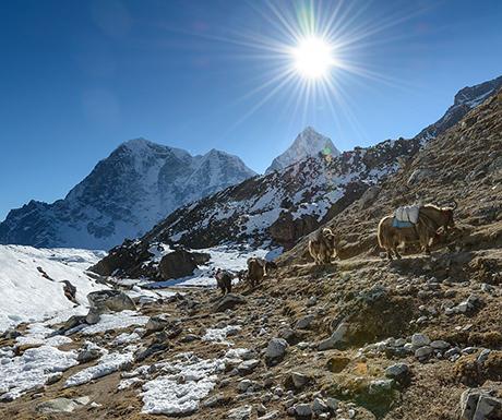 Everest Base Camp going back