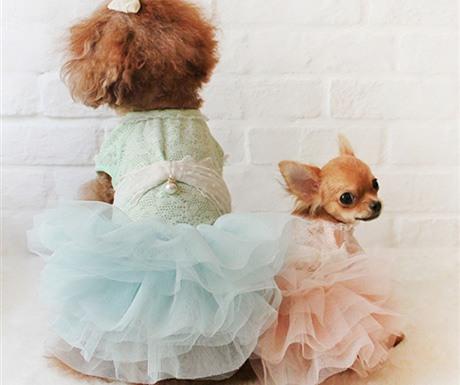 Fairy Tale Tutu Dress in Mint