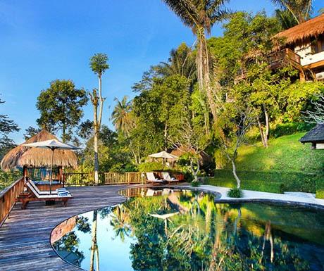 Nandini Jungle Resort Pool