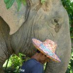 6 diverse and unmissable activities on fascinating Phuket