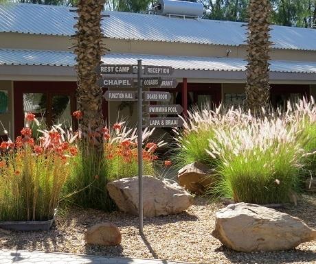 namibia-goba-lodge-garden