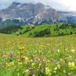 A perfect day in Italy's Dolomites mountains for ages 2 - 72