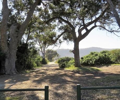 Garden Route, Sedgefiels, lagoon