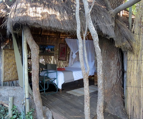 Five luxury lodges, Ngepi, tree house