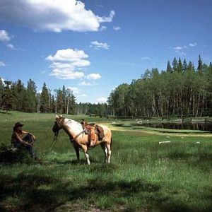 Top 5 luxury ranches in North America