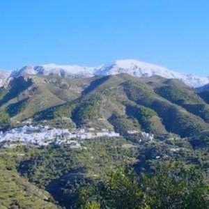 Enduring luxury: a long-term Winter rental in Andalusia