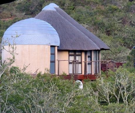 Southern Cape, Nyathi, chalet