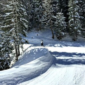 Vienna Winter Sports: skiing close to Vienna