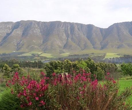Hemel-en-aarde-wine-estates-mountains