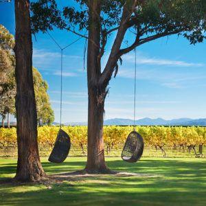 7 must-visit vineyards in New Zealand