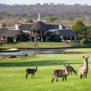 Where to go on a South African golfing safari