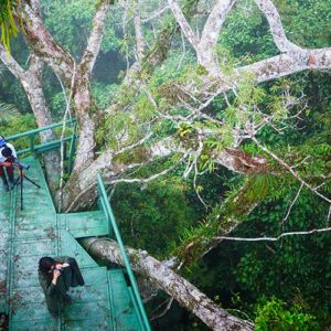 Top 5 astounding places to see in the Amazon rainforest in Ecuador