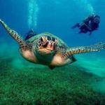 5 of the best unique resorts in Fiji