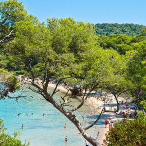 Provence in April and May: things not to miss